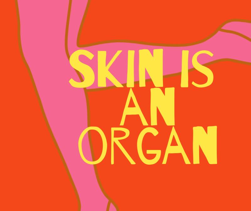 Skin-is-organ